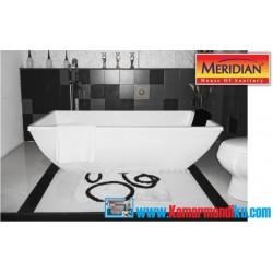 Bathtub Virgine
